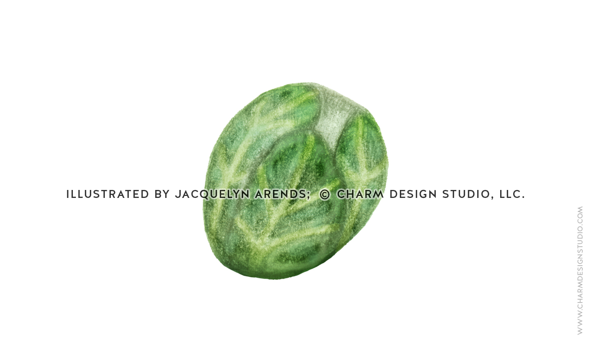 Food Illustrations by Jacquelyn Arends, © Charm Design Studio, LLC.